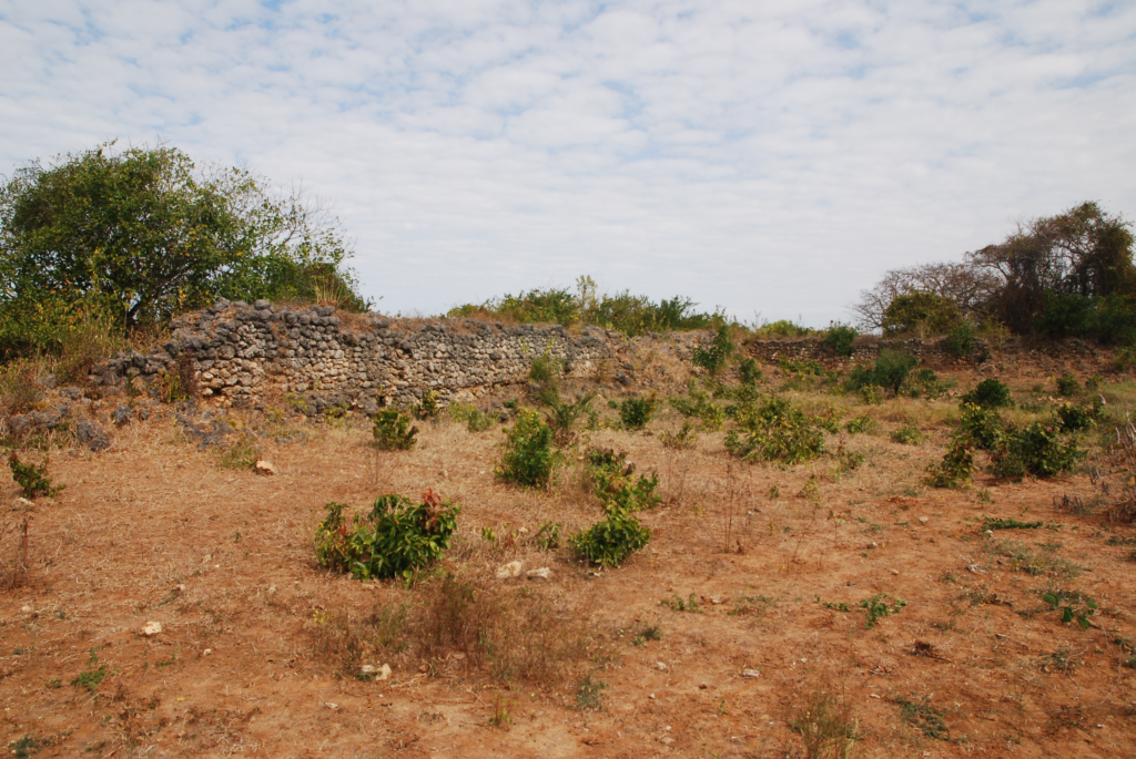Photograph of the remaining walls of Husuni Ndogo.